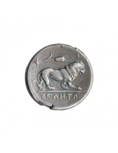 Velia - Didramma (300-280 A.C.)
